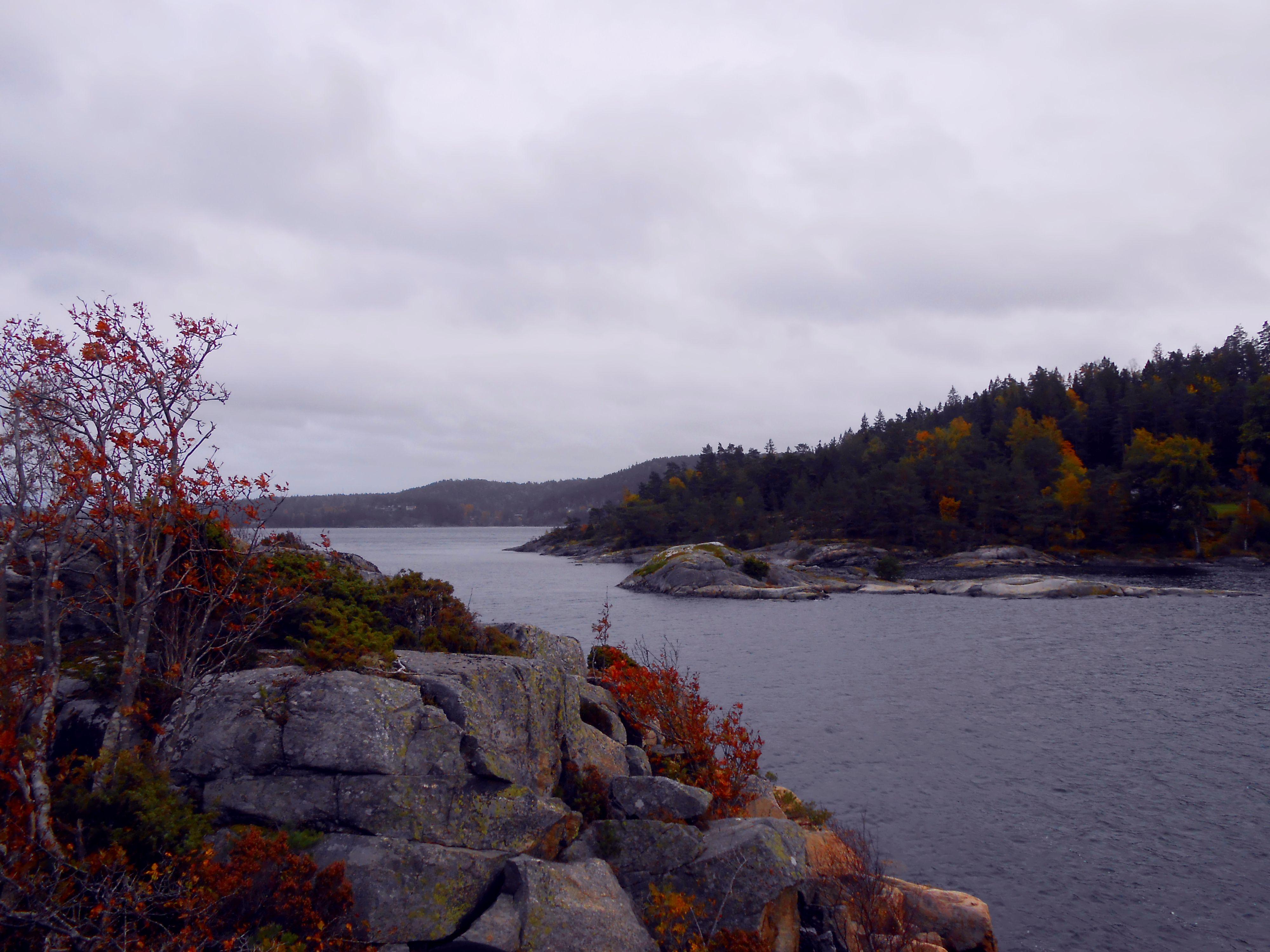 Svédországi táj
